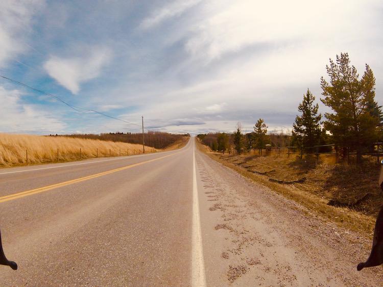 Windy Bearspaw Road