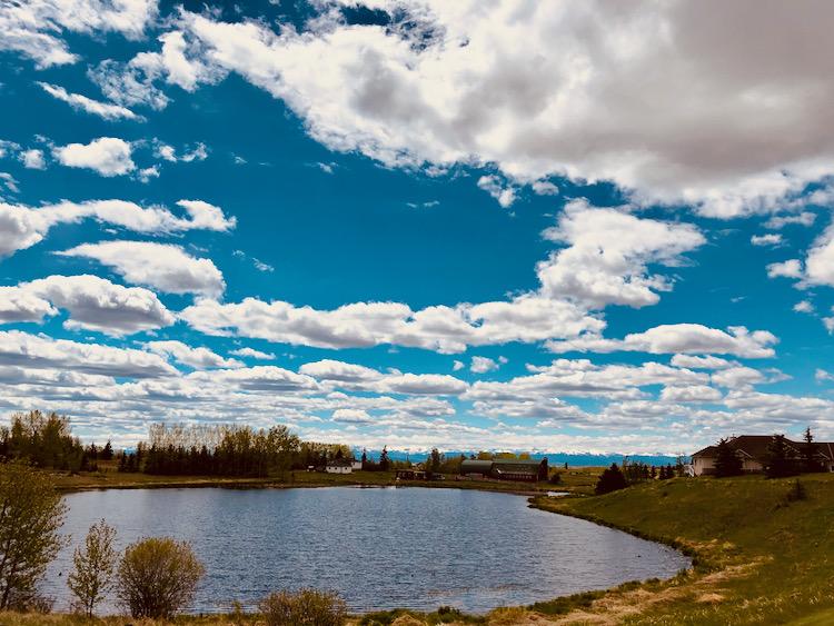 Bearspaw Pond View