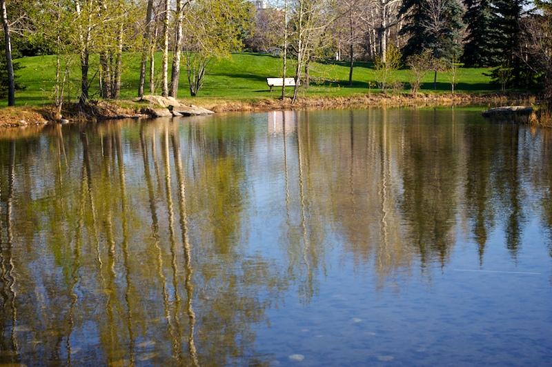2009-05-22-serenity-pond