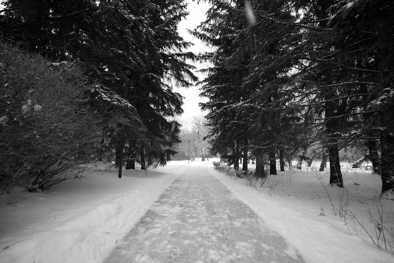 2009-12-11 - walk