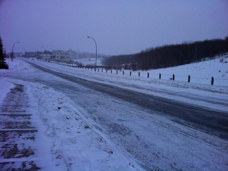 2011 02 28 arctic