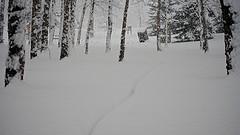 morning blizzard ride - 3
